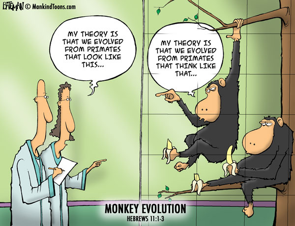 Mankind Tunes - Monkey Evolution