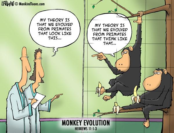 Mankind Tunes - Monkey Evolution