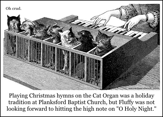 cat-organ-from-sacred-sandwich.jpg