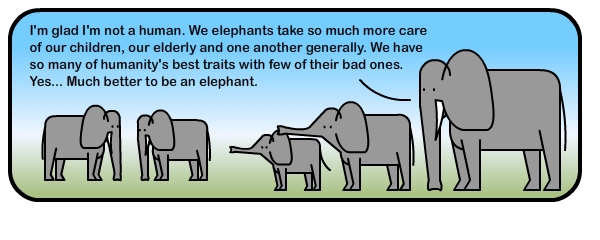 asbo elephants essay