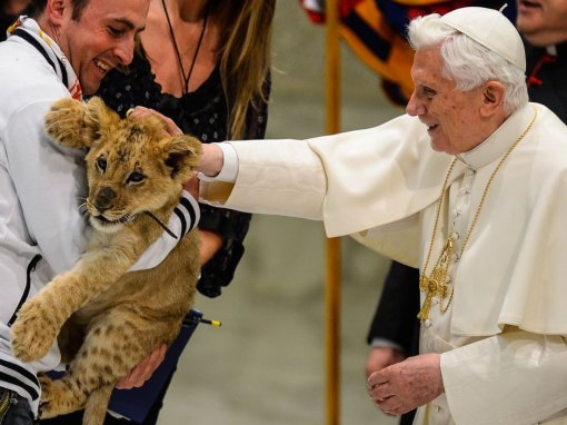 Pope Benedict XVI - With Very Large Cat
