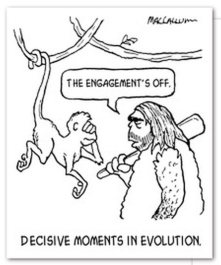 Evolution Cartoon at JessMacCallum(dot)com