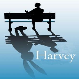 harvey_med