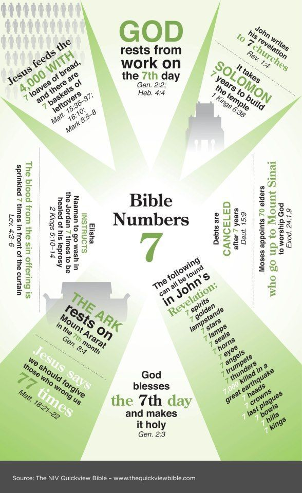 Number 7 Quickview Bible