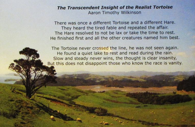 The Transcendent Insight of the Realistic Tortoise - Aaron Wilkinson