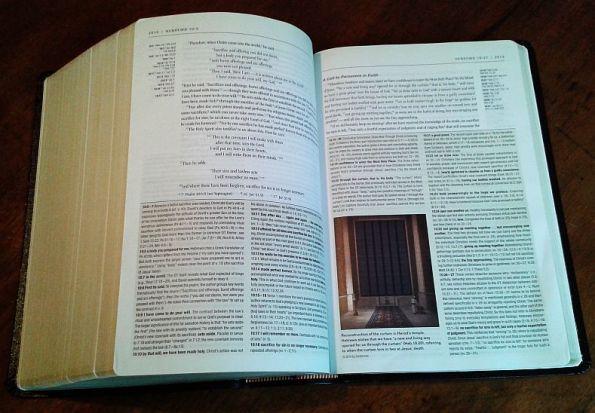 NIV Zondervan Study Bible open